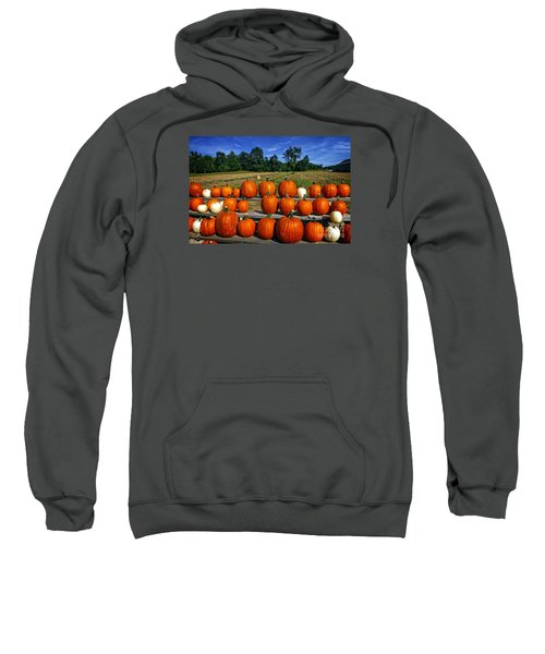 Sweatshirt featuring the photograph Pumpkins In A Row by Dee Flouton