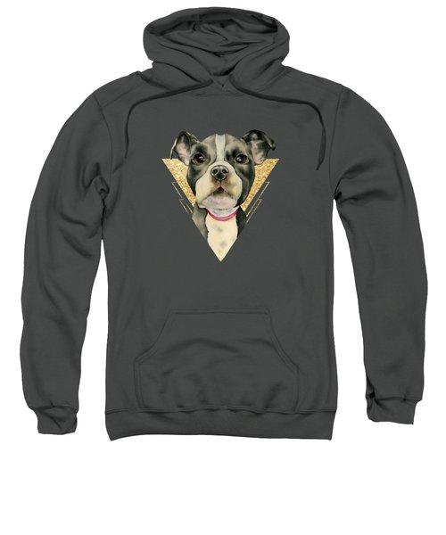 Puppy Eyes 3 Sweatshirt