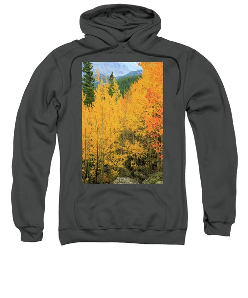 Sweatshirt featuring the photograph Pure Gold by David Chandler