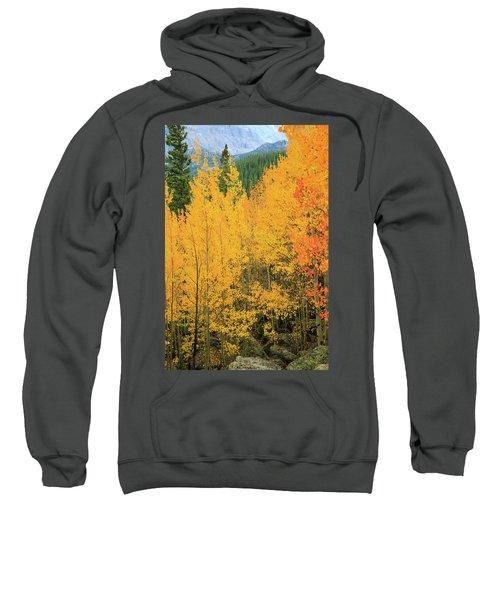 Pure Gold Sweatshirt