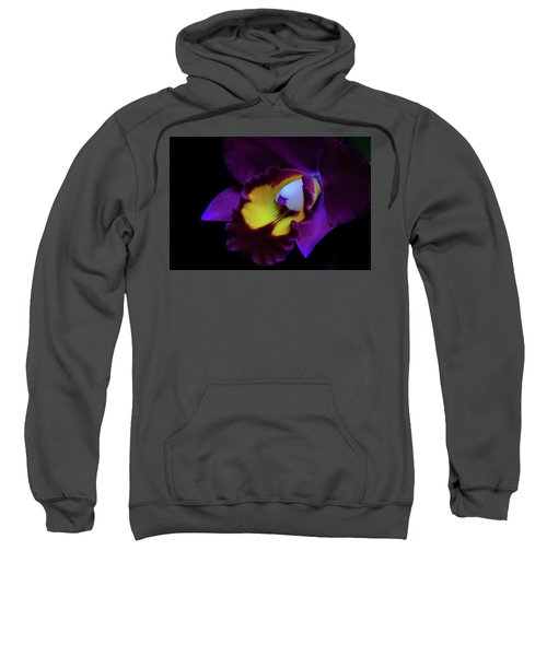 Purple Beauty Sweatshirt