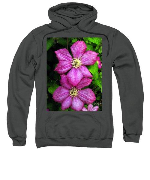 Purple Clematis 2 Sweatshirt
