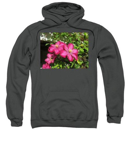 Purple Clematis  Sweatshirt