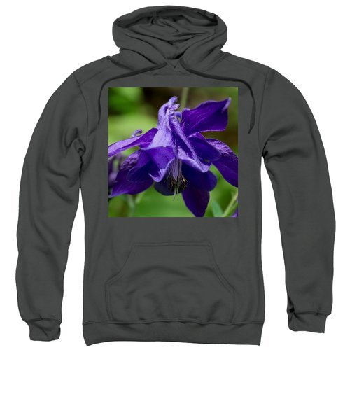 Purple Columbine Sweatshirt