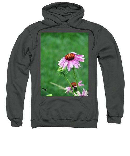 Purple Cone Sweatshirt
