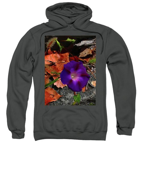 Purple Flower Autumn Leaves Sweatshirt