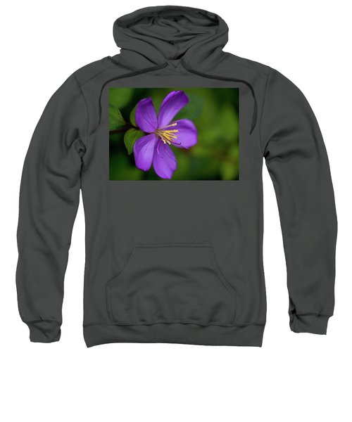 Purple Flower Macro Sweatshirt
