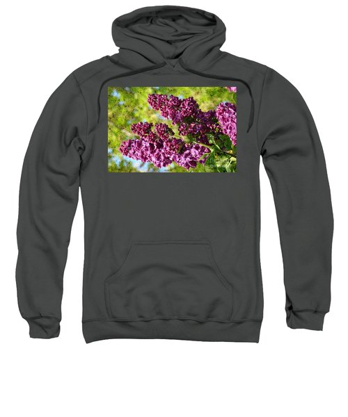 Purple Lilac 1 Sweatshirt
