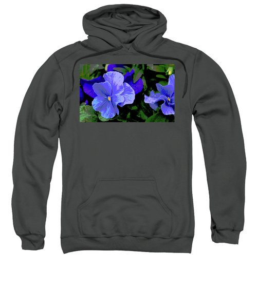 Purple Pansy Posterized Sweatshirt