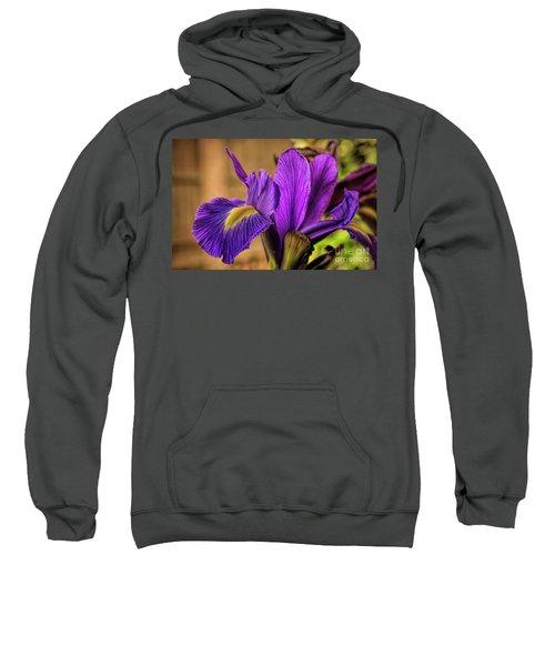 Purple People Eater Sweatshirt
