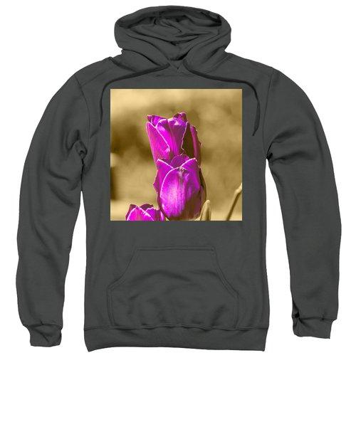 Purple Tulips Sepia Background Sweatshirt