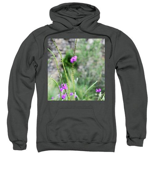 Purple Vebena Sweatshirt