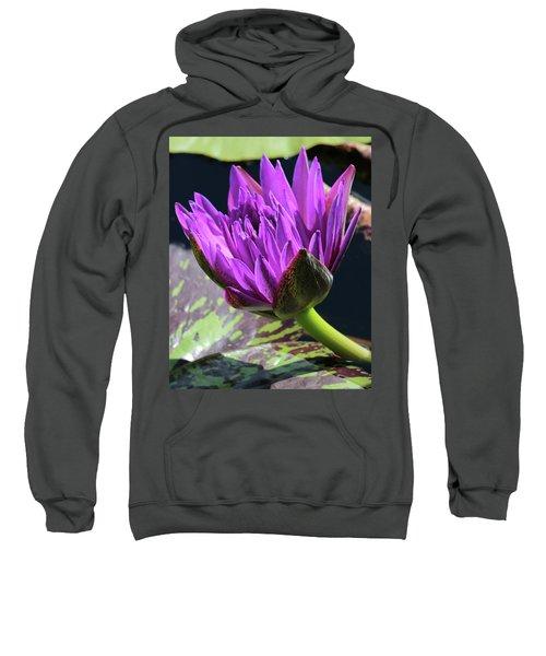 Purple Water Lily Sweatshirt