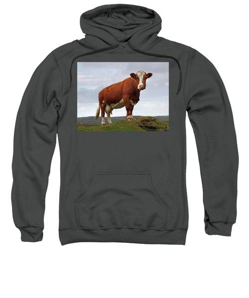 Queen Of The Mountain Sweatshirt