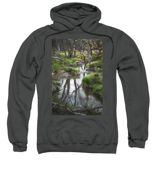 Quiet Stream Sweatshirt