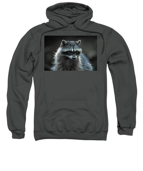 Raccoon 2 Sweatshirt