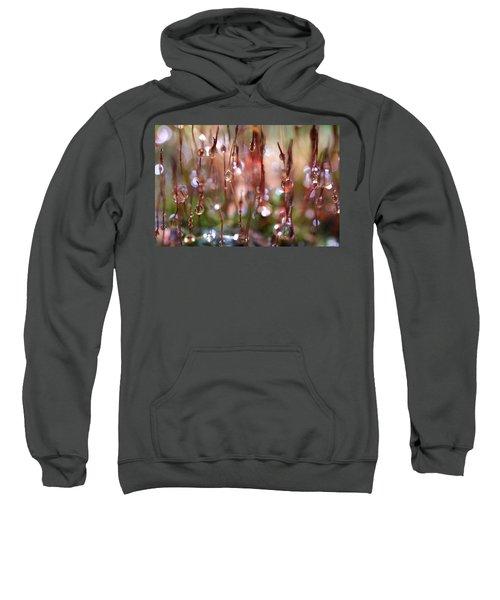 Rain Catcher Sweatshirt