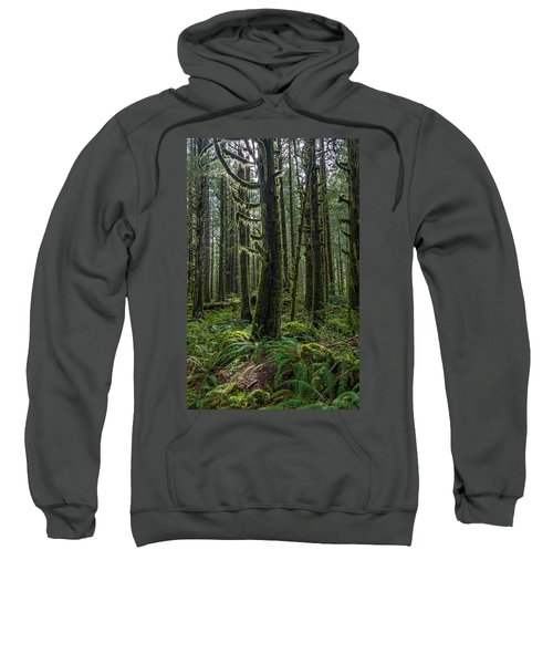 Rain Forest Of Golden Ears Sweatshirt