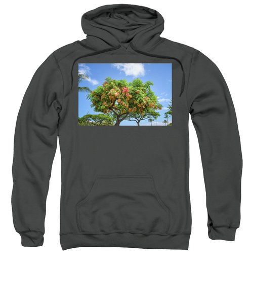Sweatshirt featuring the photograph Rainbow Shower Tree 1 by Jim Thompson