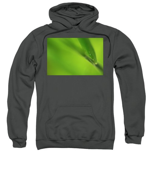 Raindrop On Grass Sweatshirt