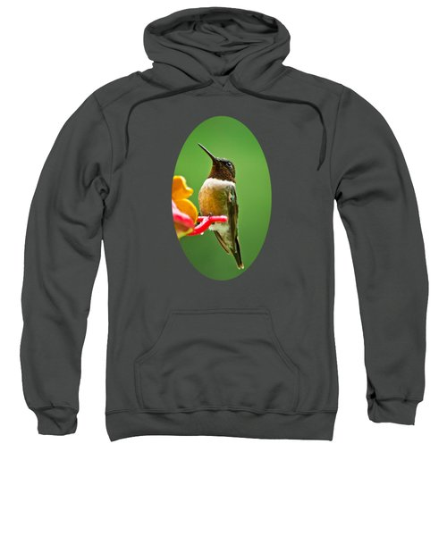 Rainy Day Hummingbird Sweatshirt by Christina Rollo