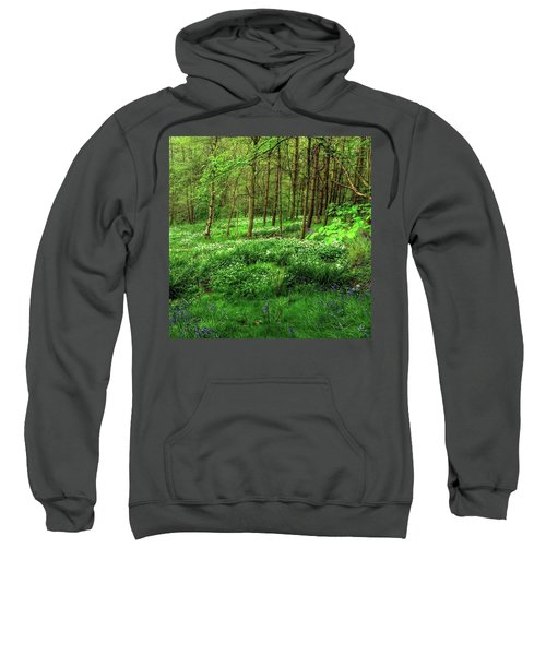 Ramsons And Bluebells, Bentley Woods Sweatshirt