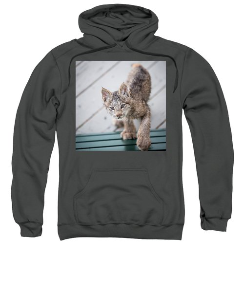 Does Click Mean Edible Sweatshirt