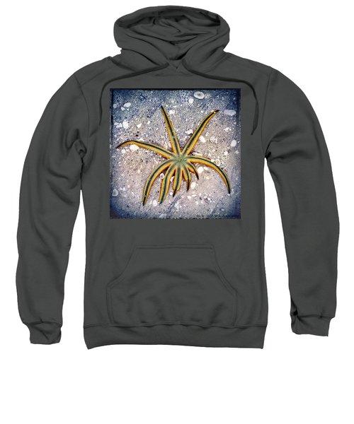 Rasta Star Sweatshirt