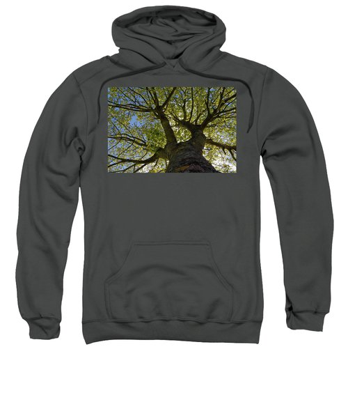 Reach For The Sky Sweatshirt