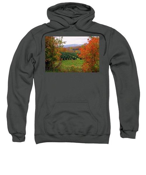 Ready For Christmas Sweatshirt
