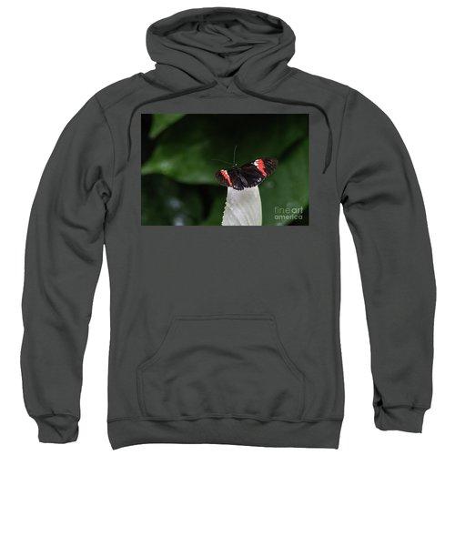 Ready To Launch Sweatshirt