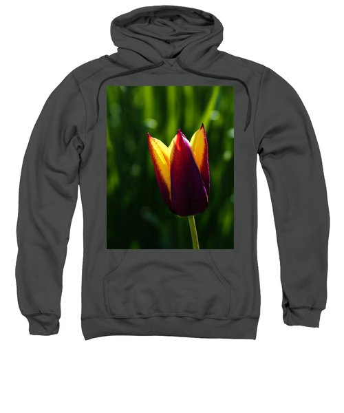 Red And Yellow Tulip Sweatshirt