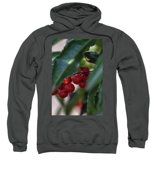 Red Berry Sweatshirt