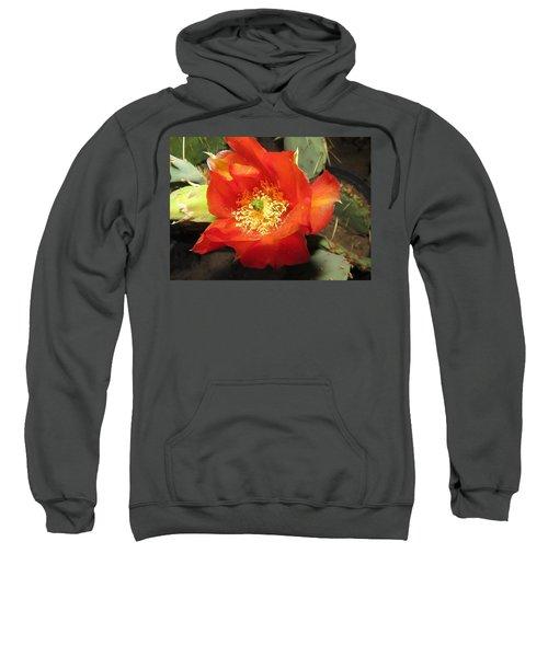 Red Bloom 1 - Prickly Pear Cactus Sweatshirt