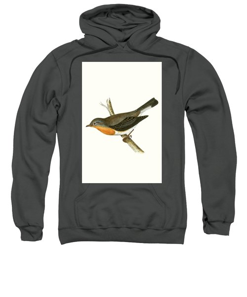 Red Breasted Flycatcher Sweatshirt by English School