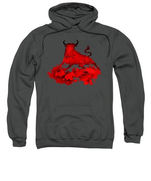 Red Bull Sweatshirt