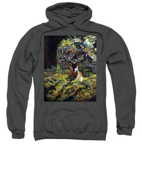 Red Deer Stag Sweatshirt