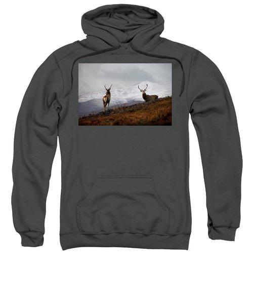 Red Deer Stags Sweatshirt