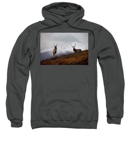 Red Deer Stags Sweatshirt