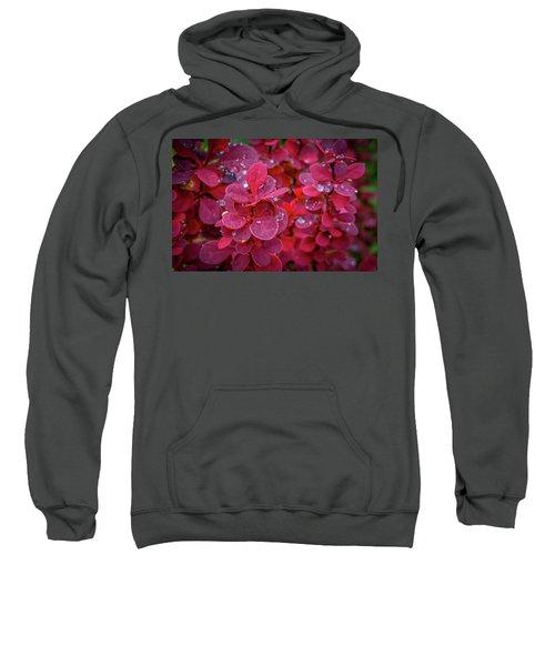 Red Dew Sweatshirt