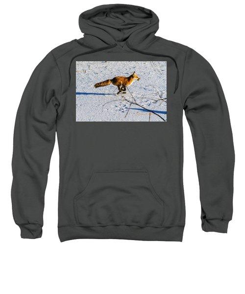 Red Fox On The Run Sweatshirt
