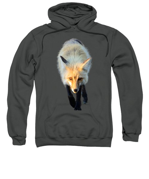 Red Fox Shirt Sweatshirt by Greg Norrell