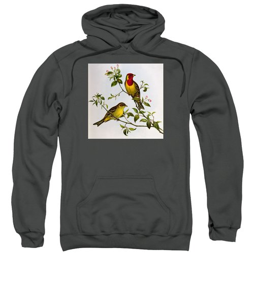 Red Headed Bunting Sweatshirt by John Gould