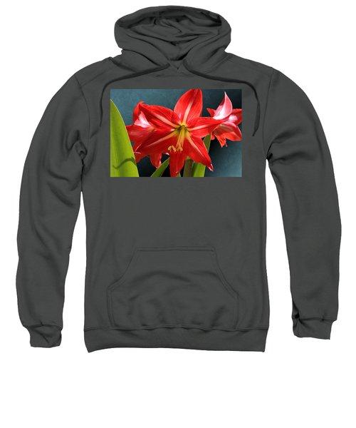 Red Lily Flower Trio Sweatshirt