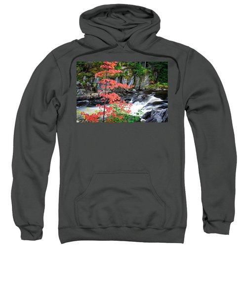 Red Maple Gulf Hagas Me. Sweatshirt