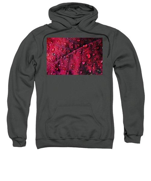 Red Morning Sweatshirt