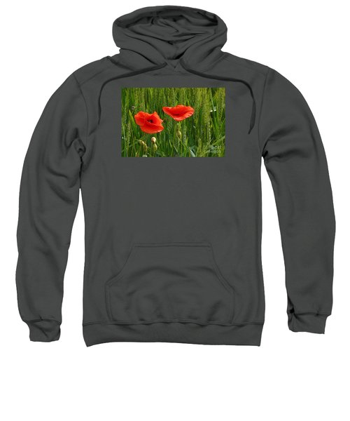 Red Poppy Flowers In Grassland 2 Sweatshirt