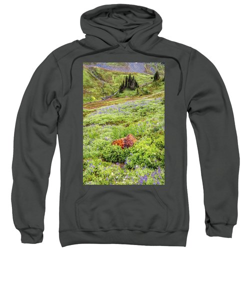 Red Rock Of Rainier Sweatshirt