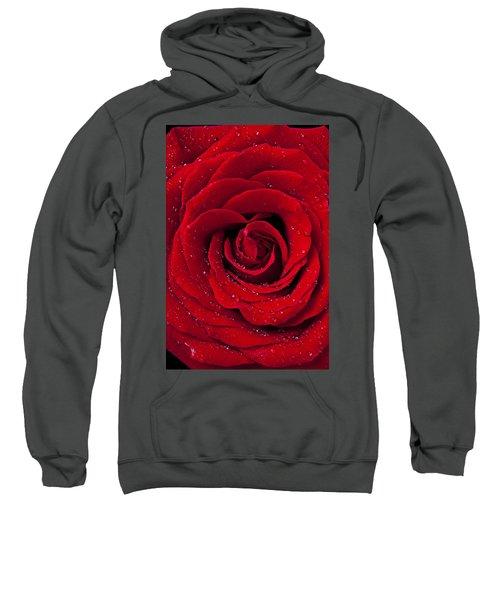 Red Rose With Dew Sweatshirt