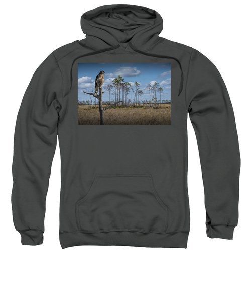 Red Shouldered Hawk In The Florida Everglades Sweatshirt